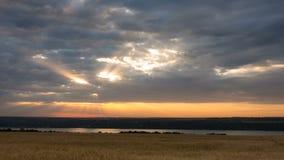 Salida del sol sobre el campo de trigo en el timelapse nublado de la mañana almacen de video