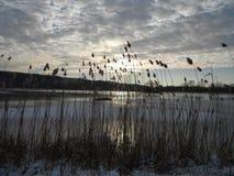 Salida del sol sobre el lago congelado Fotos de archivo