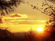 Salida del sol sobre el musgo de Flandes Foto de archivo