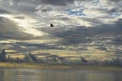 Salida del sol sobre el océano en la Florida fotografía de archivo libre de regalías
