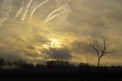 Salida del sol sobre el pólder en Bélgica Fotos de archivo