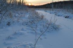Salida del sol sobre el río nevoso congelado del bosque del invierno Foto de archivo libre de regalías