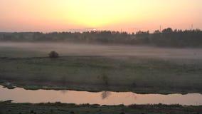 Salida del sol sobre el r?o, niebla ligera del arrastramiento en la tierra almacen de video