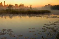 Salida del sol sobre la cama de río vieja en Polonia Foto de archivo libre de regalías