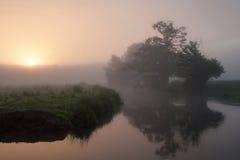 Salida del sol sobre la horqueta del río Foto de archivo libre de regalías