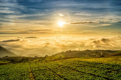 Salida del sol sobre la montaña en Phu Tab Berk Foto de archivo