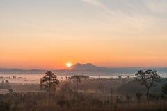 Salida del sol sobre la montaña y el bosque brumoso en la mañana Foto de archivo