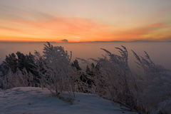 Salida del sol sobre la niebla Fotos de archivo libres de regalías