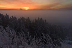 Salida del sol sobre la niebla Imagen de archivo