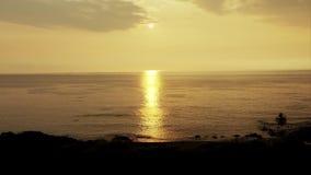 Salida del sol sobre la playa y las palmeras tropicales de la isla hawaii metrajes