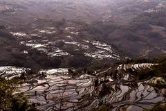Salida del sol sobre la terraza del arroz en Yuanyang, Yunnan, China Imagen de archivo