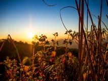 Salida del sol sobre las colinas Fotografía de archivo