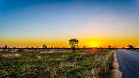Salida del sol sobre los campos de la sabana y de hierba en el parque nacional central de Kruger imagenes de archivo