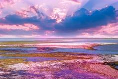 Salida del sol sobre los lagos de sal Imágenes de archivo libres de regalías
