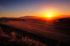 Salida del sol sobre tierras de labrantío Imagen de archivo libre de regalías