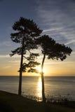 Salida del sol sobre Torbay Imagen de archivo libre de regalías