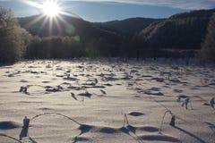 Salida del sol sobre un campo Imagenes de archivo