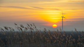 Salida del sol sobre un campo en invierno Fotografía de archivo libre de regalías