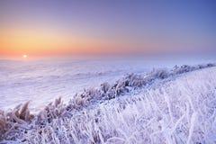 Salida del sol sobre un lago congelado en los Países Bajos fotografía de archivo libre de regalías