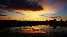 Salida del sol sobre un pantano Imagen de archivo libre de regalías