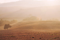 Salida del sol toscana imagenes de archivo