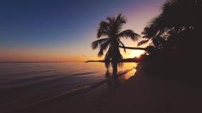 Salida del sol tropical de la isla Hoja de la palmera y playa arenosa de la isla V?deo hermoso de la opini?n del mar almacen de video