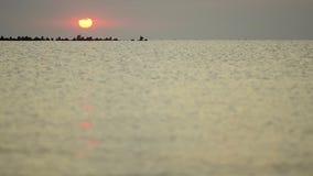 Salida del sol del verano sobre rocas negras por las orillas de mar almacen de metraje de vídeo