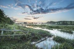 Salida del sol vibrante hermosa del verano sobre landsc inglés del campo Fotos de archivo libres de regalías
