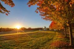Salida del sol y follaje de otoño en Art Hill, St. Louis, Missouri fotos de archivo