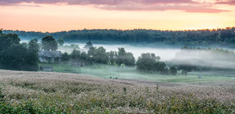 Salida del sol y niebla cerca del bosque fotos de archivo