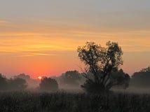 Salidas del sol Foto de archivo libre de regalías