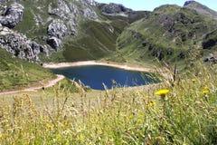 Saliencia& x27; lago di s con i fiori pieni di acqua in Asturie, Fotografie Stock