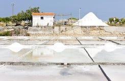 Salin dans Troncalhada image stock
