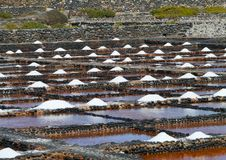 Salina del Carmen salt evaporation ponds Stock Photo