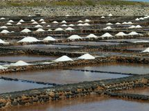 Salina del Carmen salt evaporation ponds Royalty Free Stock Image