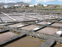Salina del Carmen salta avdunstningdamm Arkivbild