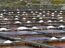 Salina del Carmen salta avdunstningdamm Royaltyfri Foto