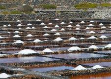 Salina del Carmen salta avdunstningdamm Arkivfoto