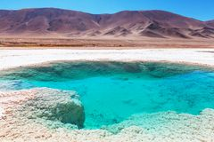 Salinas in Argentina. Ojo del Mar in Argentina Andes is a salt desert in the Jujuy Province Stock Photography