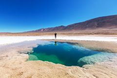 Salinas in Argentina. Ojo del Mar in Argentina Andes is a salt desert in the Jujuy Province Stock Image