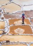 SALINAS DE MARAS,秘鲁- 2015年10月12日:提取sa的工作者 库存照片