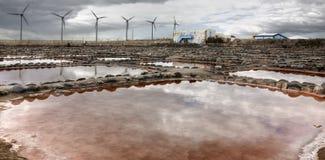 Salinas de TenefA© 免版税库存照片