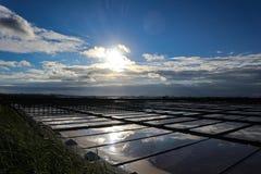 Salinas em Aveiro fotografia de stock