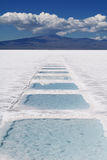 Salinas Grandes Stock Photography