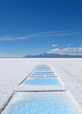 Salinas Grandes (Great salars) Royalty Free Stock Photos