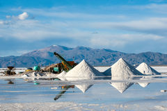 Salinas Grandes Salt Desert In The Jujuy, Argentina Royalty Free Stock Photography