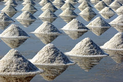 Saline. Salt piles in Thailand,falmer culture to prepare for store in warehouse Stock Photography