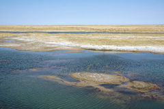 Saline-alkali lake and soil Stock Photography