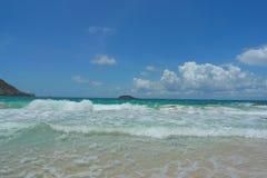Saline beach, St. Barts, French West Indies. Saline beach at St. Barts, French West Indies stock photography
