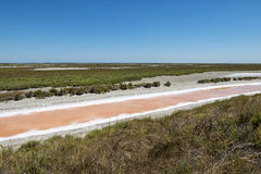 Saline in Camargue Stock Photography